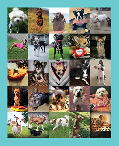 Animals Of The Mia Foundation