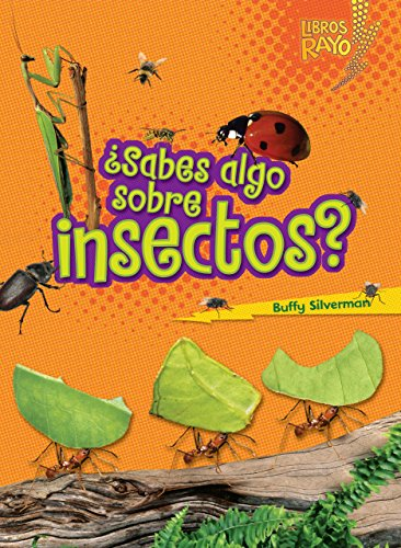 .Sabes Algo Sobre Insectos?/Do You Know About Insects? (Libros Rayo - Conoce Los Grupos De Animales/Lightning Bolt Books T - Meet The Animal Bolt Books   Meet The Animal Groups)