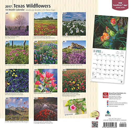 Texas Wildflowers 2017 Square (Multilingual Edition)
