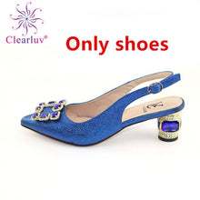 Load image into Gallery viewer, Italian Shoes with Matching Bag Set Decorated with Appliques African Shoes and Bags Matching Set Elegant Italian Women Pumps