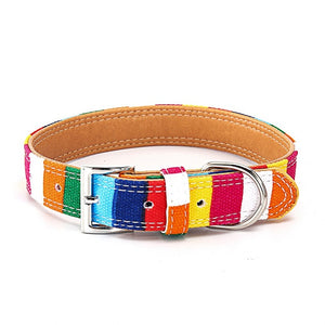 Colorful Striped Dog Leash