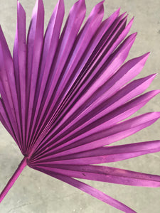 Palm Leaves - Magenta