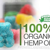 hemp bombs cbd gummies