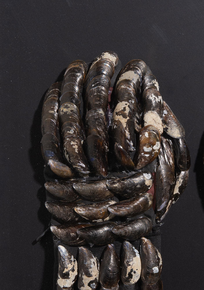 Mussle Gloves