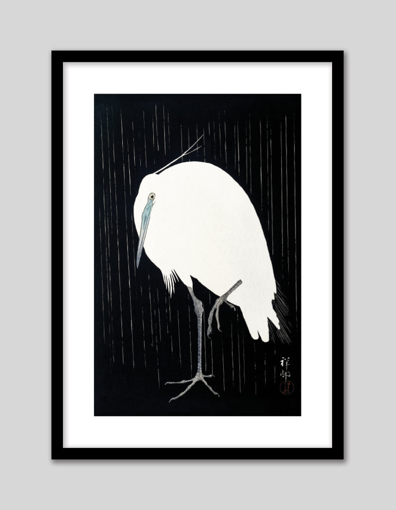 Egret in the Rain