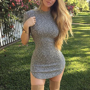 Casual Round Collar Plain Tight Knit Bodycon Dress