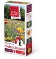 Multicoloured Meadow Seeds 30m2