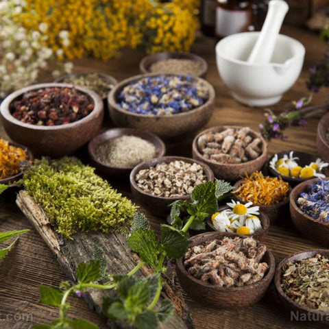Natural Herbs and Extracts