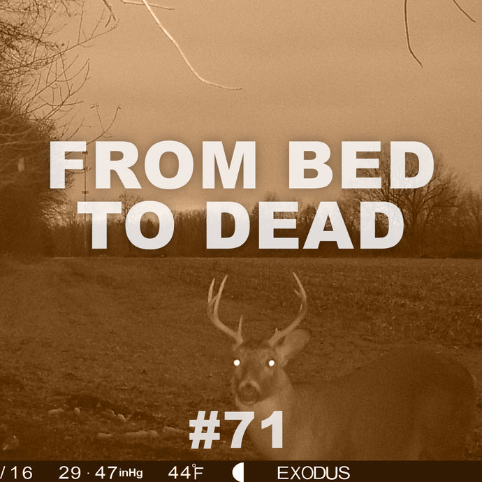 #71 FROM BED TO DEAD