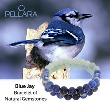 Load image into Gallery viewer, Blue Jay Gemstone bracelet by Pellara, made of Amazonite, Sodalite, Blue Tiger. Aries, Scorpio, Gemini, Pisces & Leo zodiacs. Third eye, Throat and Heart chakra