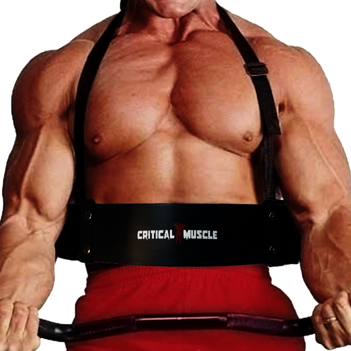 Critical Arm Blaster - (Biceps Isolator/Bicep Bomber)