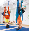 Aerial Yoga Swing Pro-Complete Set