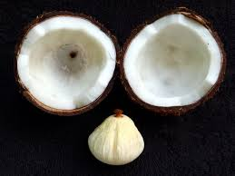 Coconut Oil was produced from Over ripe coconuts, using finger wipe out coocnut oil