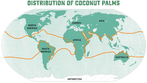 map of virgin coconut oil producing regions