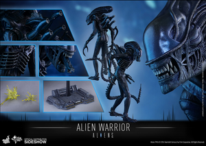 Aliens Hot Toys Alien Warrior 1:6 Scale Action Figure HOTMMS354 - Action Figure Warehouse Australia | Comic Collectables