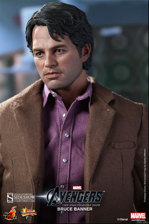 Marvel Hot Toys Avengers Bruce Banner 1:6 Scale Action Figure HOTMMS229