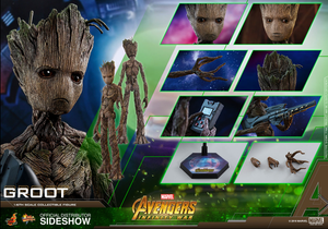 Marvel Hot Toys Infinity War Groot 1:6 Scale Action Figure HOTMMS475