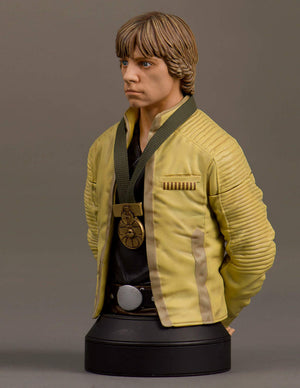 Star Wars Gentle Giant Luke Skywalker Yavin Ceremonial Mini Bust