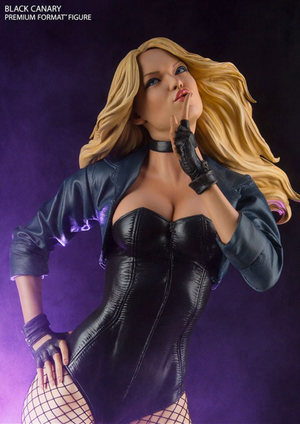 DC Sideshow Collectibles Green Arrow Black Canary Premium Format 1:4 Scale Statue - Action Figure Warehouse Australia | Comic Collectables