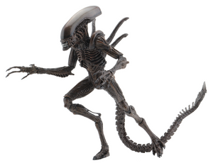 Alien Neca Series 14 Alien Warrior Action Figure Pre-Order