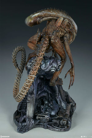 Aliens Sideshow Collectibles Alien Warrior Mythos Maquette Statue Pre-Order