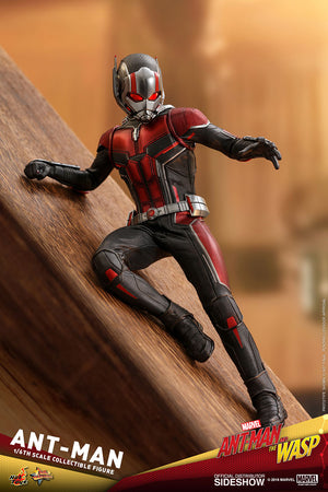 Marvel Hot Toys Ant-Man & the Wasp Ant-Man 1:6 Scale Action Figure HOTMMS497 Pre-Order