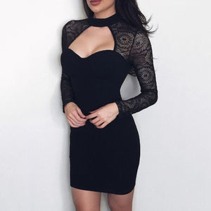 Fashion Lace Long Sleeves Bodycon Dress