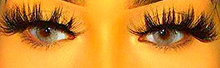 Mz. Envy 25 - BeauCou Lash Boutique