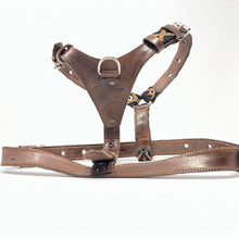 Harness, Large