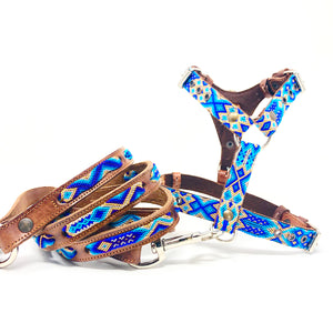 Harness, XSmall w/leash -BLUE