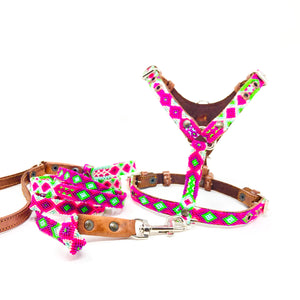 Harness, Toy w/leash