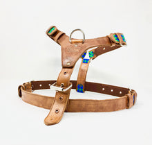 Harness, Large w/leash
