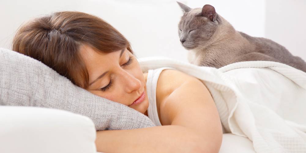 Benefits And Disadvantages Of Sleeping With Your Cat