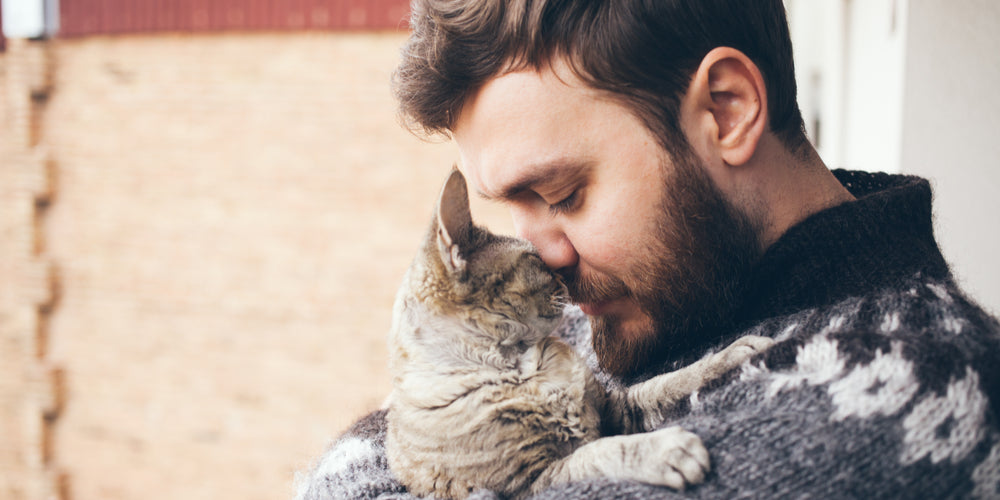How to love your cat even more