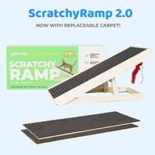 Load image into Gallery viewer, ScratchyRamp 2.0