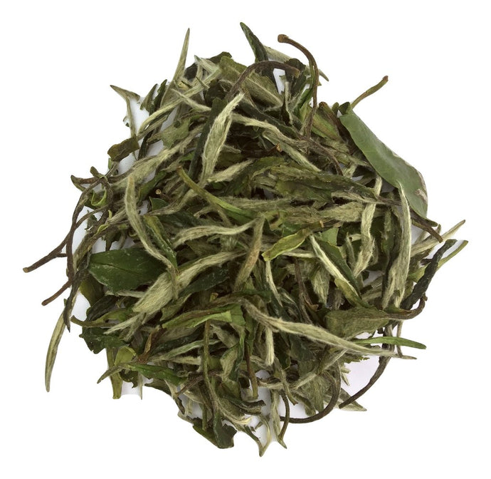 A Brief Introduction to White Tea