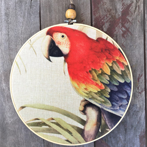 THE SCARLET MACAW HOOP