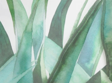 Agave Print - Glass with White Frame