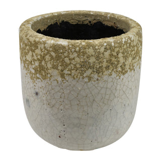 Conch Ceramic Pot
