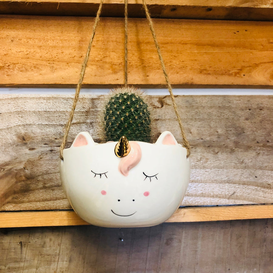 Unicorn Hanging Planter