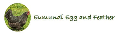 Eumundi Egg & Feather