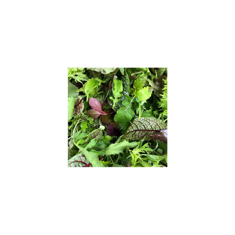 Salad Mix (Cert. Chem Free Seasonal Speciality Leaves & Flowers)