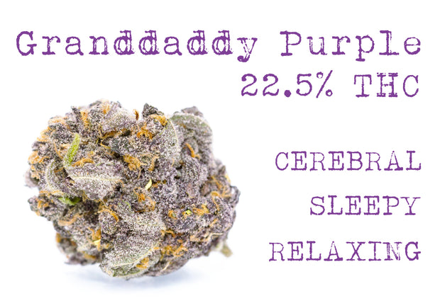 Granddaddy Purple (Indica)