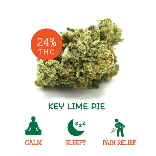 Key Lime Pie (Indica Hybrid)