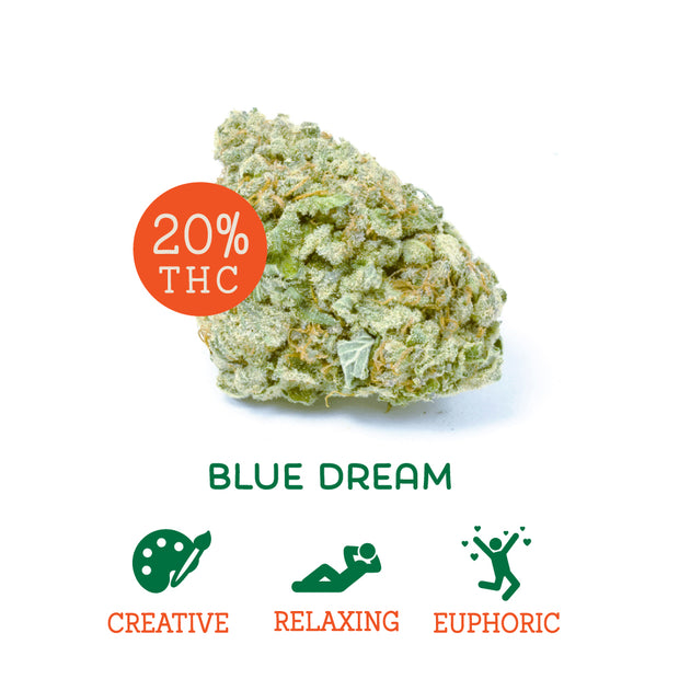 Blue Dream (Sativa Hybrid)