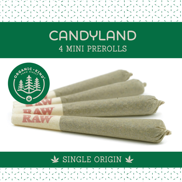 Candyland - 4 Pack Mini Single Origin Prerolls