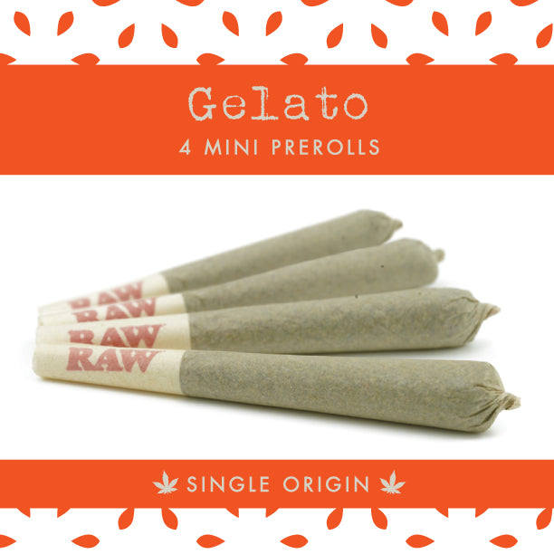 Gelato - 4 Pack Mini Single Origin Prerolls