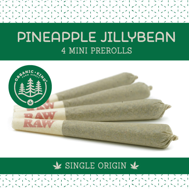 Pineapple Jillybean - 4 Pack Mini Single Origin Prerolls