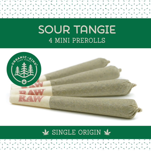 Sour Tangie - 4 Pack Mini Single Origin Prerolls