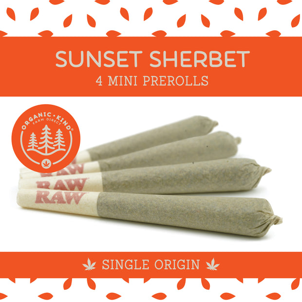 Sunset Sherbet - 4 Pack Mini Single Origin Prerolls